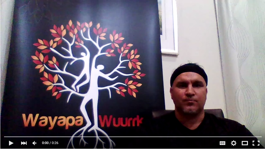 Introduction to Wayapa®