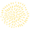 wayapa leaf 3